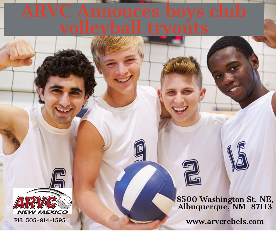 members-of-male-high-school-volleyball-team-picture-id498131585-2